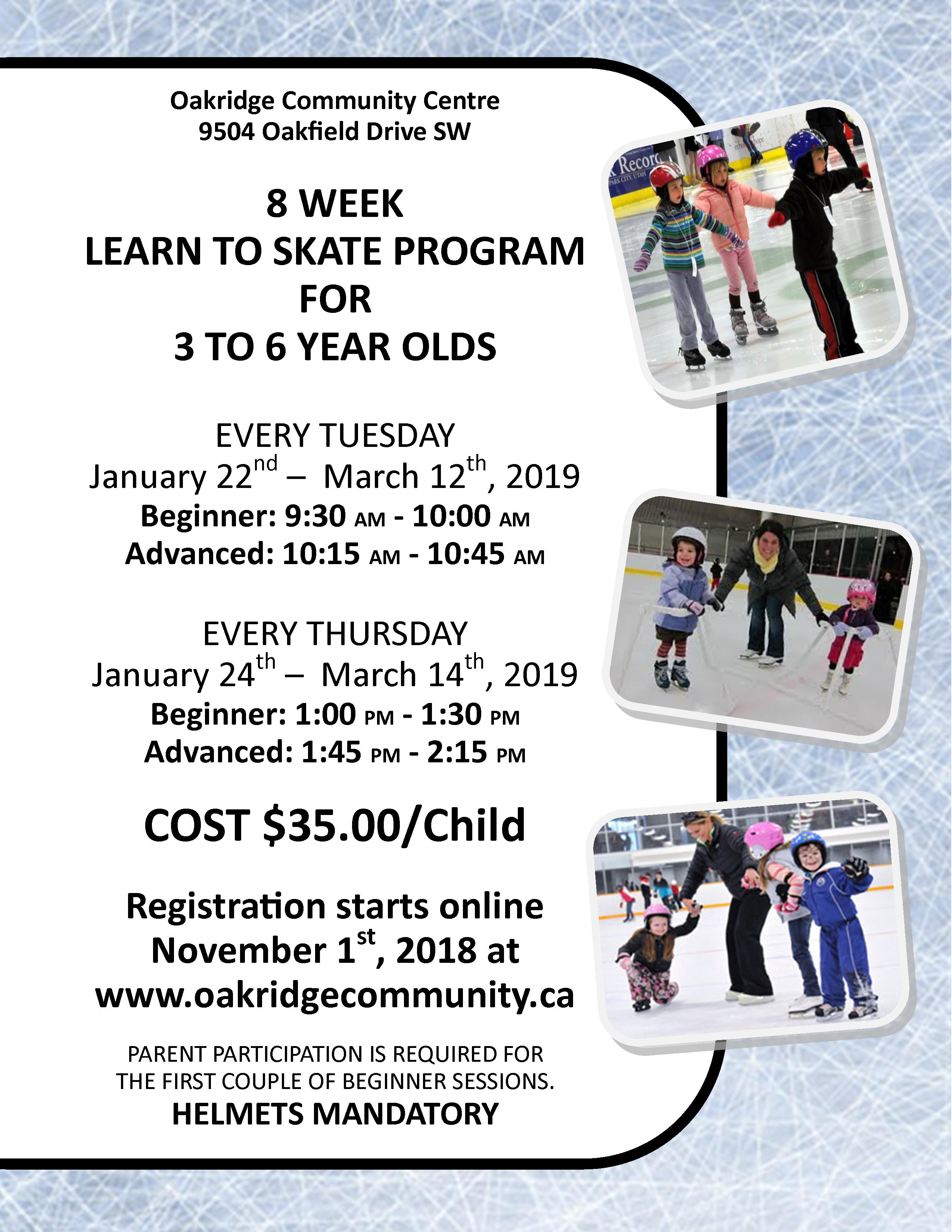 2019 learn to skate poster january to march